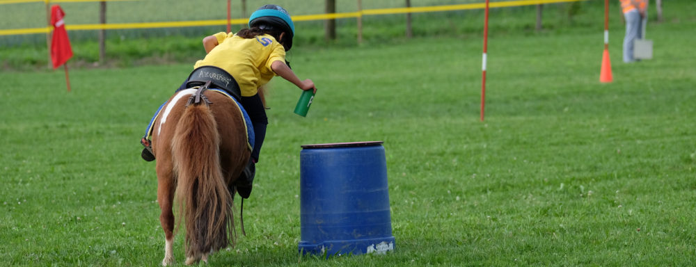 Passion Pony Games